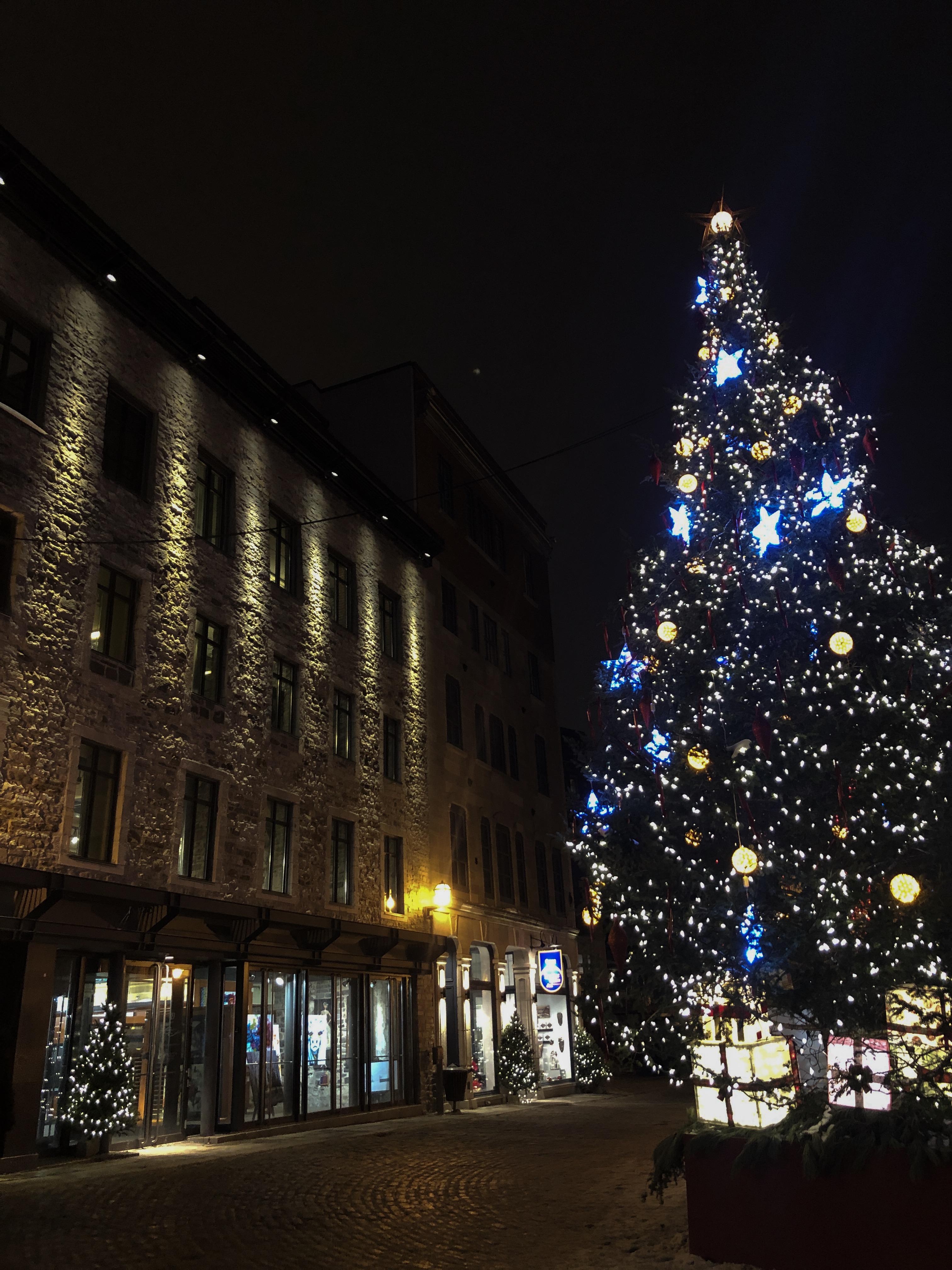 Sapin de Noël dans le Vieux-Québec