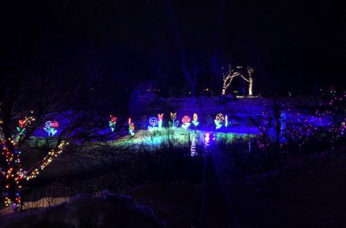 Festilumières à l'Aquarium de Québec - Décembre 2018