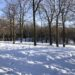 Top 10 des activités à faire à Montréal en hiver