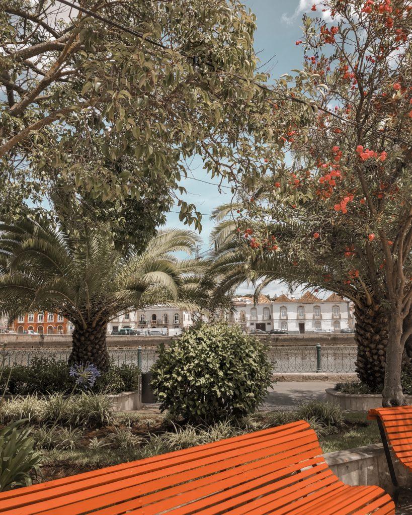 Visiter Tavira - City guide : jardim do coreto