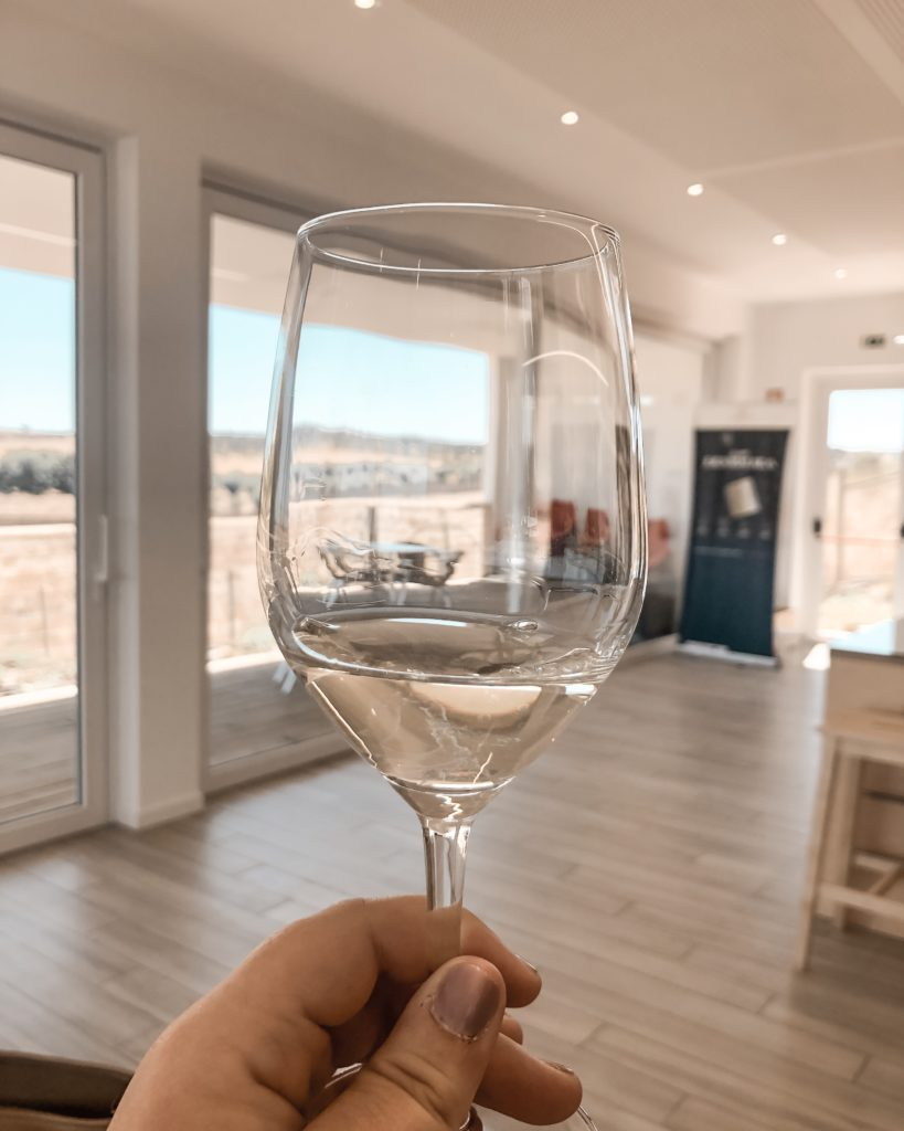 """Vin """"Invisivel"""" (invisible) Dégustation de vin au domaine d'Ervideira en Alentejo au Portugal"""